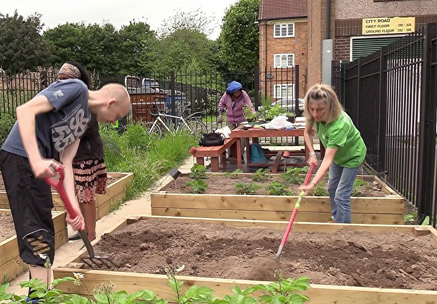 Community gardens are one way people are investing time and energy into their local area
