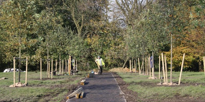 Social value at Heroes Wood